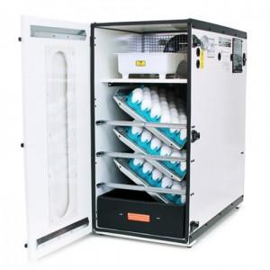 1202a-classic-sportsman-cabinet-incubator