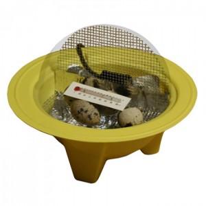 chickbator-incubator